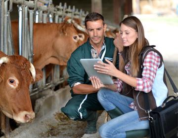 Sie arbeiten oder beraten in der Landwirtschaft
